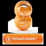 Войти в личный кабинет Новотелеком